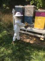 Smallbeekeeper